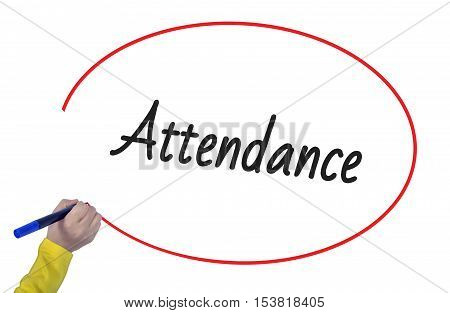 Woman hand writing attendance with marker on white background professionally