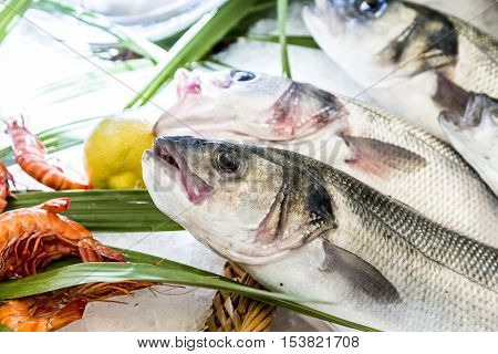 Whole Fresh Fishes Are Offered In The Fish Market