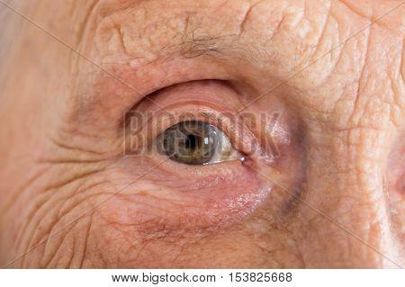 Extreme Close-up Photo Of Senior Woman's Eye