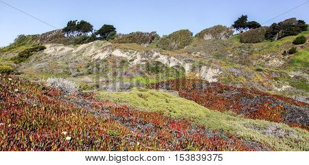 Coastal Views of the Pacific Ocean Bluffs from Fort Funston, Golden Gate National Recreation Area, California, USA