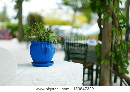 Typical greek courtyard with blue flower pot on Kos poster
