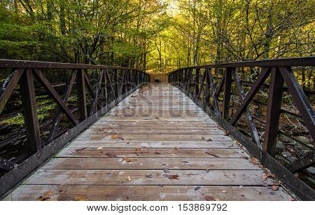 Great Smoky Mountain Hiking Trail. Footbridge along a trail in the Great Smoky Mountains with autumn foliage as the background.