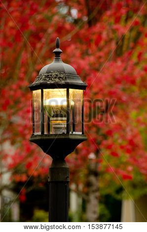 Street Lamp In Front Of Red Maple Foliage