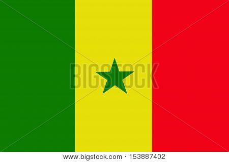 Senegal flag ,Senegal national flag illustration symbol.