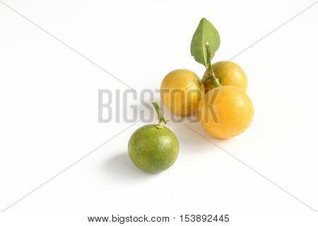 Group of kumquat placed on white background