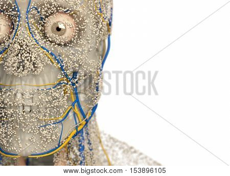 Human anatomy face, front of head , close-up, covered in network of dots. Bio-tech skin, disease or molecular biology. Sensory points or cells. 3D illustration.