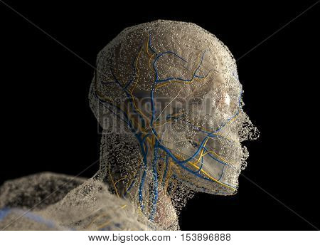 Human anatomy head covered in network of dots. Bio-tech skin, disease, infection or molecular biology. Sensory points or cells. 3D illustration.