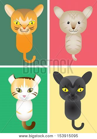 Cute kitty cats, Vector Illustration, Illustration different kinds of cat; bombay, abbyssinian cat, american bobtail, Bombay cat.