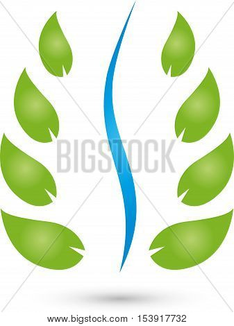 Many leaves and spine, chiropractor and naturopathic logo