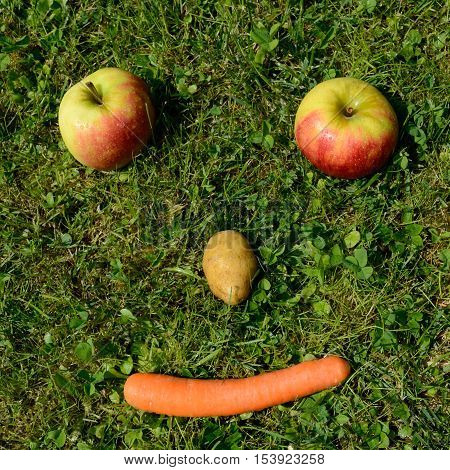 Friendly face from vegetables and fruit in the meadow