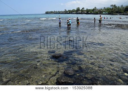 the sheltered clear waters at Kahaluu Beach Park, Big Island Hawaii
