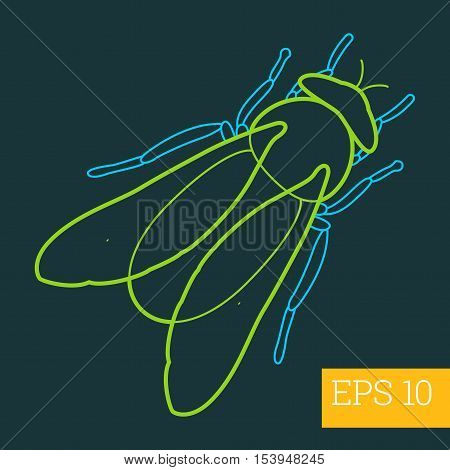 Gadfly Insect Outline Vector