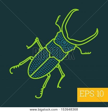 Stag Beetle Insect Outline Vector