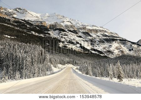 View of Icefields Parkway in winter, Alberta, Canada