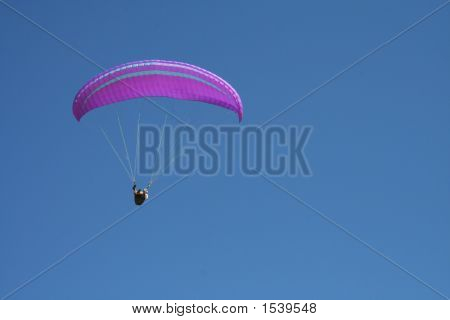 Paraglide - Purple Canopy