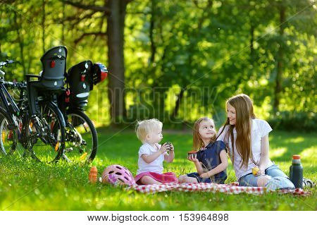 Mother And Her Daughters Picnicking In The Park