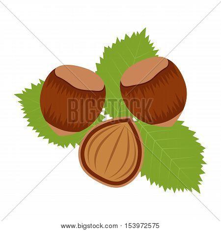Flat icon hazelnuts and half of hazelnut. Vector illustration.