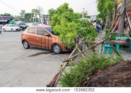 Accidents Caused By Storms And Rain.