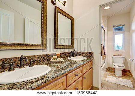 Double Sink Bathroom Vanity With Antique Faucets