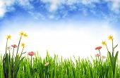 Spring scenery poster