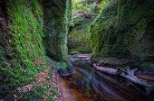 Finnich Glen aka Devil's Pulpit is a little gem hidden in a Forest just off the Drymen near Loch Lomond Scotland UK poster
