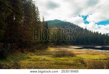 Coniferous Forest Around The Lake. Beautiful Landscape In Mountains On A Cloudy Autumn Day