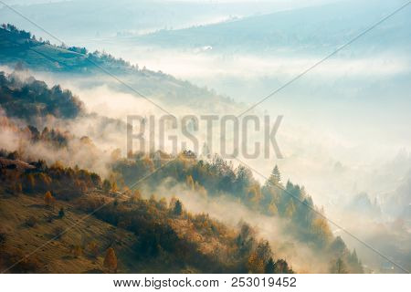 Beautiful Foggy Autumn Background. Lovely Scenery With Forest On Hill