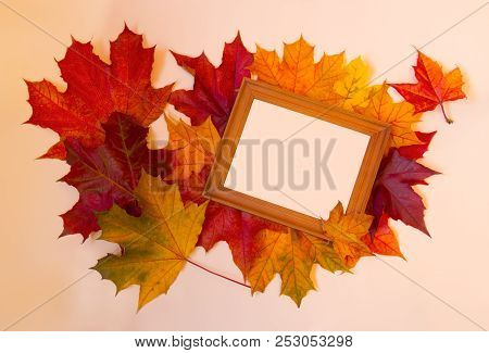 Picture Frame And Autumn Maple Leaves On Pastel Background. Copy Space.