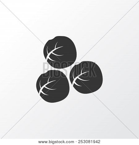 Brussels Sprouts Icon Symbol. Premium Quality Isolated Brussels Cabbage Element In Trendy Style.