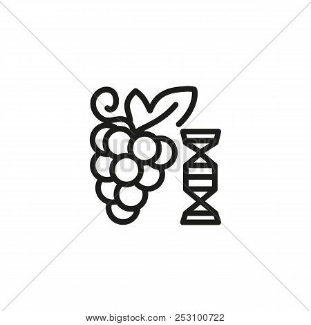 Genetically modified grape line icon. Fruit, genome, market. Selection concept. Vector illustration can be used for topics like vineyard, farming, biotechnology poster