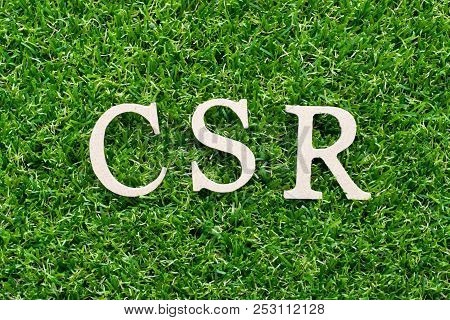 Wood Alphabet In Word Csr (abbbreviation Of Corporate Social Responsibility) On Artificial Green Gra