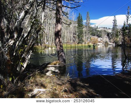 Fisherman Wade Fishing In Small Lake On A Sunny Autumn Day Adjacent To Lake Sabrina Near Aspendell A