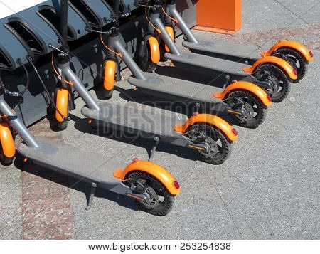 Electric Scooters In Row On The Parking Lot. City Bike Rental System, Public Kick Scooters On The St