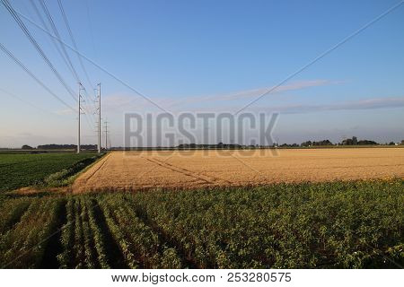 New Power Lines In The Polder At Bleiswijk Heading To Leiden As Part Of The 380kv Ring In The Nether