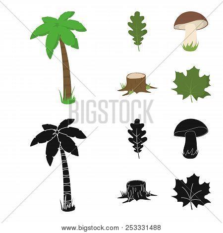 Oak Leaf, Mushroom, Stump, Maple Leaf.forest Set Collection Icons In Cartoon, Black Style Vector Sym