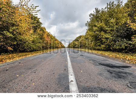Empty Asphalt Road Through The Autumn Woods. Autumn Scene With Road In Forest. Beautiful Scenic Empt