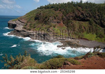Hawaiian Rocky Beach