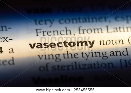 Vasectomy Word In A Dictionary. Vasectomy Concept.