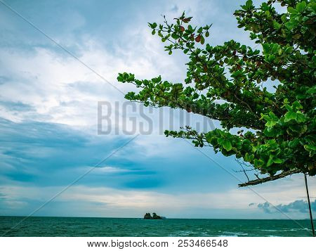 Idyllic Ocean Blue Sky And Green Tree Beside The Ocean,holiday Summer Travel Concept