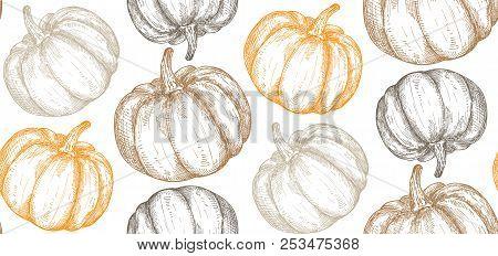 Vector Hand Drawn Sketched Pumpkin Seamless Pattern