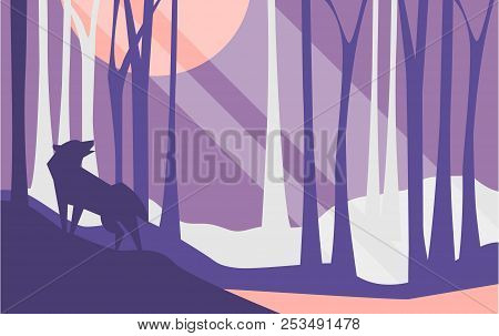 Beautiful Scene Of Nature, Peaceful Landscape With Forest And Wolf At Night Time, Template For Banne