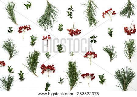 Winter Holidays Botanical Composition With Pine Twigs And Winter Berries, Flat Lay