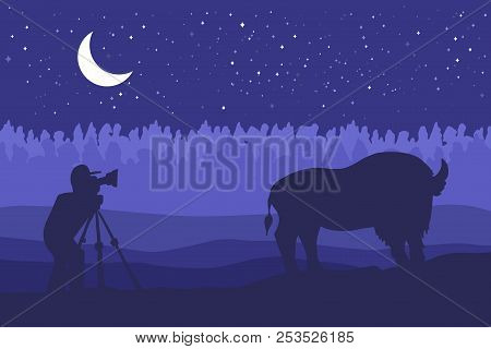 Landscape With Wild Bizon On Field. Prairie Landscape. Night With Moon Panorama. Natural Scene. Phot