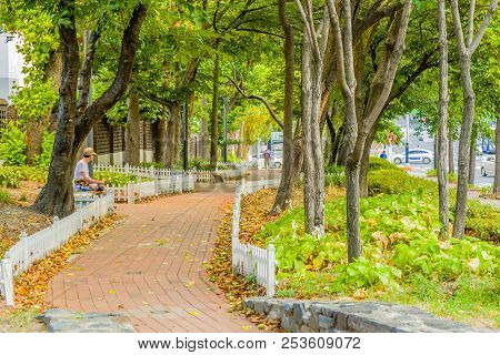 Daejeon, South Korea:  August 12, 2018; Unidentified Man Sitting On Bench Beside Red Brick Sidewalk