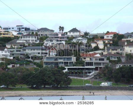 Auckland Houses