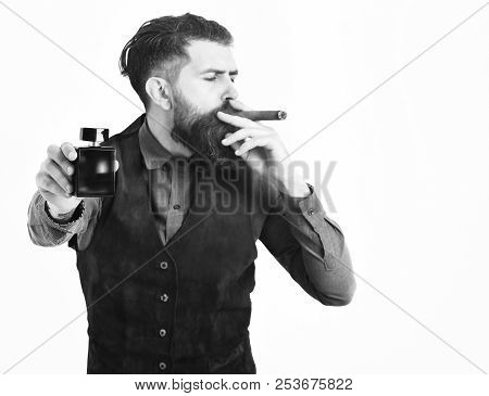 Serious Face And Holding Perfume Isolated On White Background. Bearded Man Smoking Cigar With Seriou