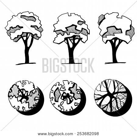 Trees For A Landscape Design. Different Hand Drawn Trees Isolated On White Background, Sketch, Archi