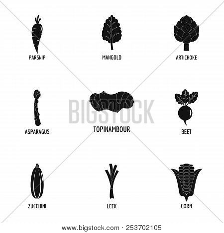 Floristic Icons Set. Simple Set Of 9 Floristic Icons For Web Isolated On White Background