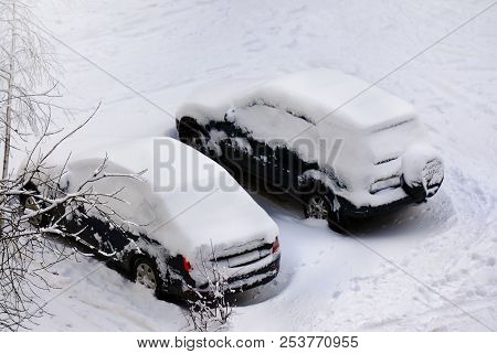 Winter Nature, Snow And Cars In Snowdrifts