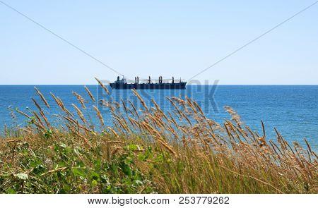Sea Coast, Cargo Ship On Horrizon, Orange Green Grass, View From The Coast